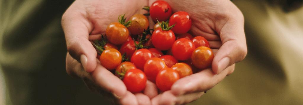 Alimentação: comer menos frutas e vegetais pode causar ansiedade?
